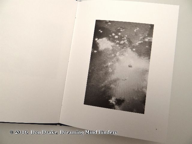 'Reflection with Leaves', image 8 in Kate Jordahl's and Don Drake's One Poem Book, Crystal Day